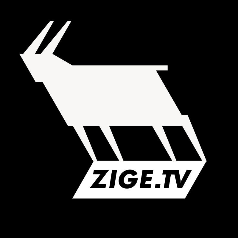ZIGE_logo_invert
